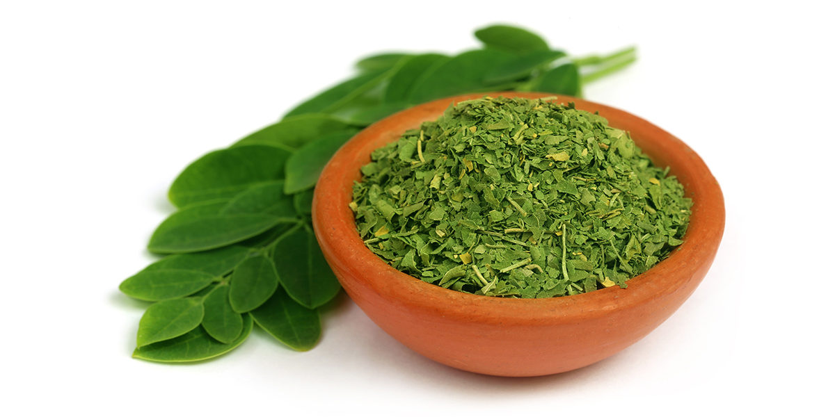 Moringa Increases Breast Milk Supply